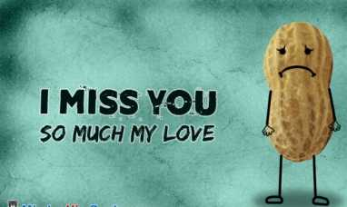 Meaning of i miss you so much my dear